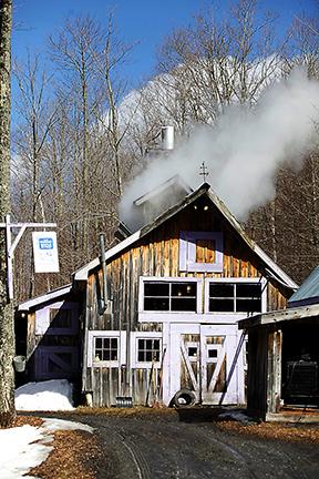 Sweet Retreat Sugar House